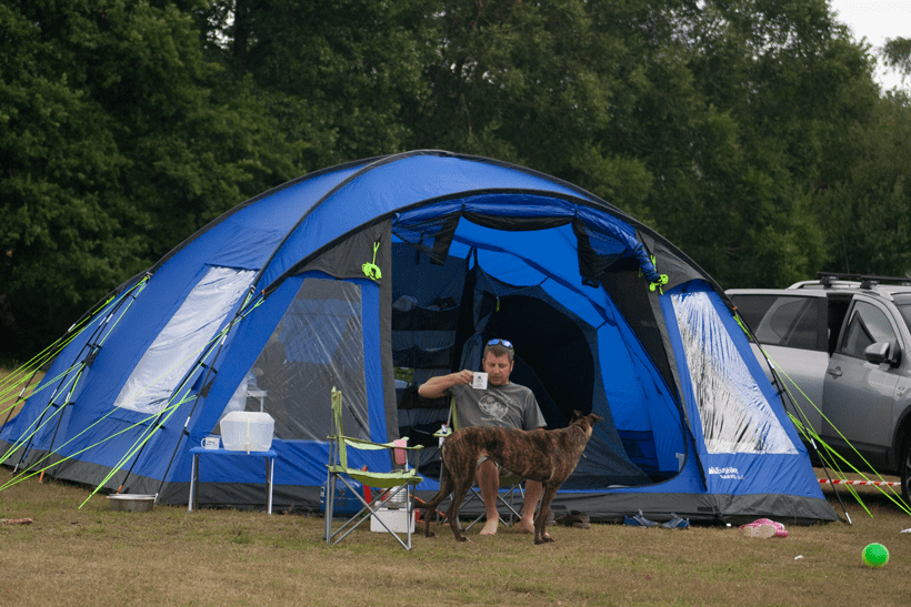 camping with kids and dogs in the New Forest