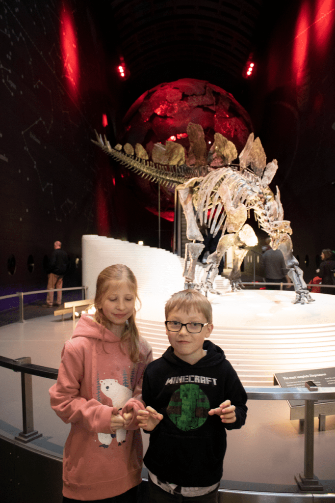 kids inside the natural history museum infront of the stegosaurs exhibit at Exhibition Road Entrance