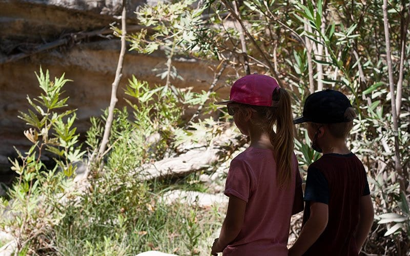 begining of the Avakas Gorge a good hike and different activity to do near Paphos with kids