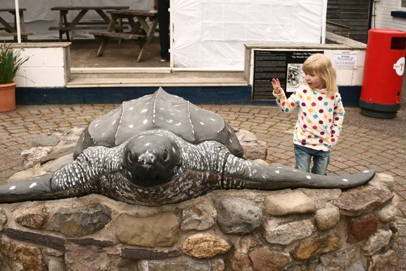leatherback sea turtle statue in Anglesea Sea Zoo